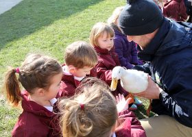 Holding the duck - Longdown Activity Farm