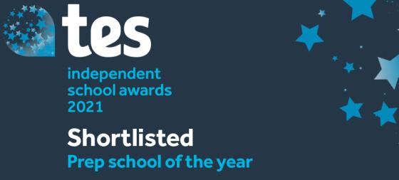 Tes Independent School Awards
