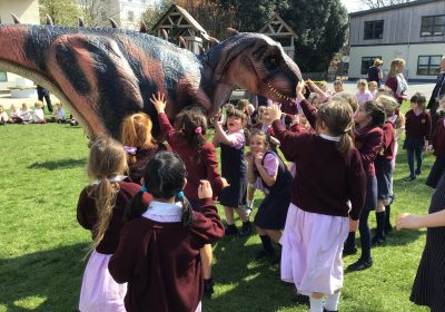 Dinosaur visit to Prep School