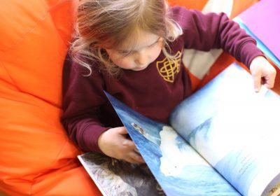 Pre-School child reading book